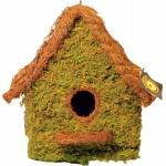 Galapagos Mossy Hide Maison With Chain