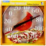 Headwind Consumer Ezread Dial Thermometer - Winter Cardinal