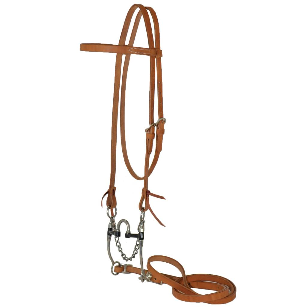 Reinsman Medium Port Correction Bit Browband Bridle Set