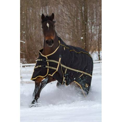 Noble Equestrian 4-In-1 Guardsman Turnout Blanket - FREE $50 Neck Cover With Purchase