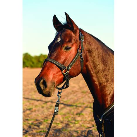 Lami-Cell Classic Halter with Breakaway