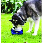 Rambo Dog Feed Bowl