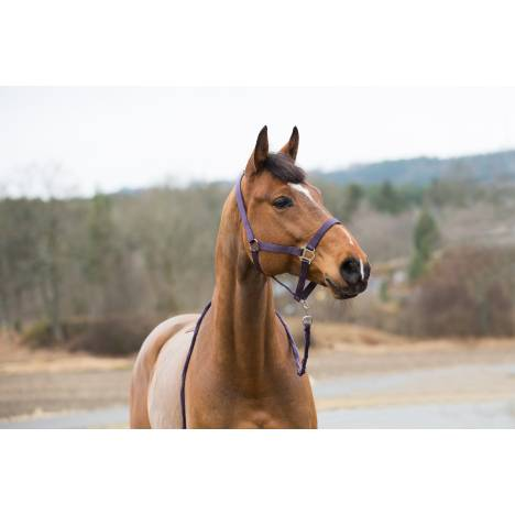 Horze Spirit Halter & Lead Set