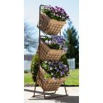 Panecea Garden Planters, Flower Pots & Window Boxes