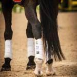 Majyk Equipe Boyd Martin XC Elite Boot with ARTi-LAGE Technology - Front Boots