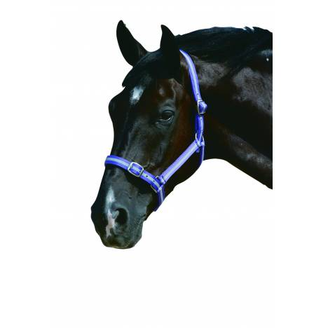 Roma Headcollar & Lead Set