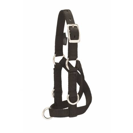 Weaver Sheep & Goat Training Halter