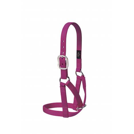 Weaver Leather Barn Cow Halter