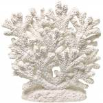 Exotic Environments Coral Fan