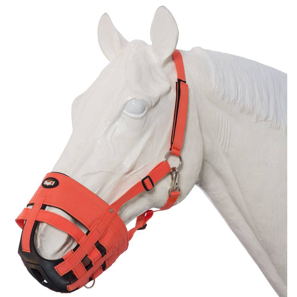 RED YEARLING GRAZING MUZZLE WITH HALTER TOUGH 1 NEW TACK EQUINE