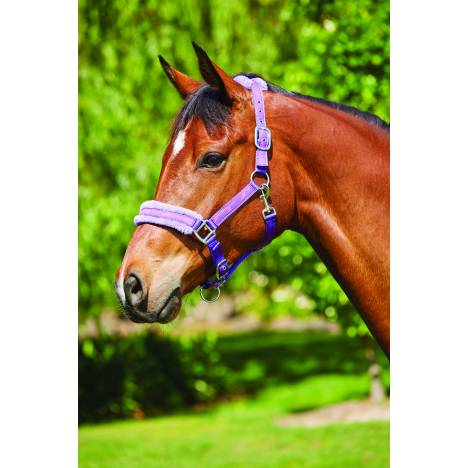 Saxon Fleece Lined Ribbon Headcollar