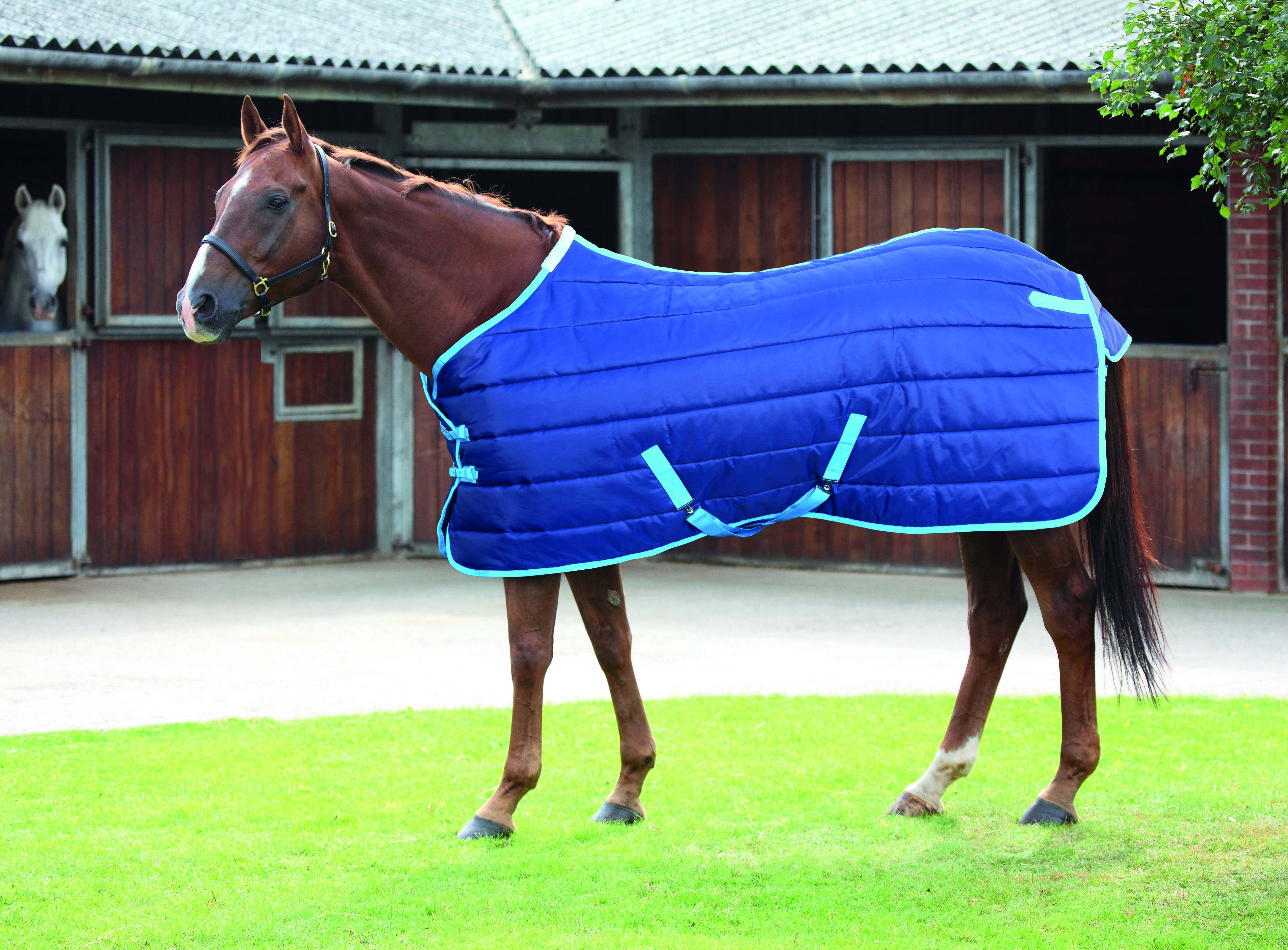 Navy Blue Shires Tempest Original Stable Sheet