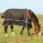 Classic Equine Sheets
