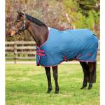 Saxon 600D Standard Neck Medium Turnout Blanket IV