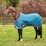 Weatherbeeta ComfiTec Plus Dynamic Standard Neck Medium Turnout Blanket