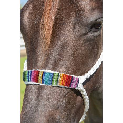 Professionals Choice Cowboy Braided Halter 10' Lead