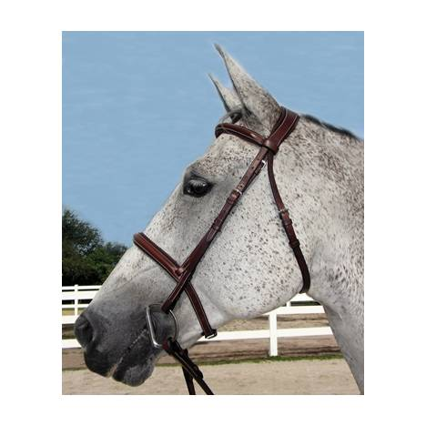 Henri De Rivel Pro Stress Free Padded Bridle