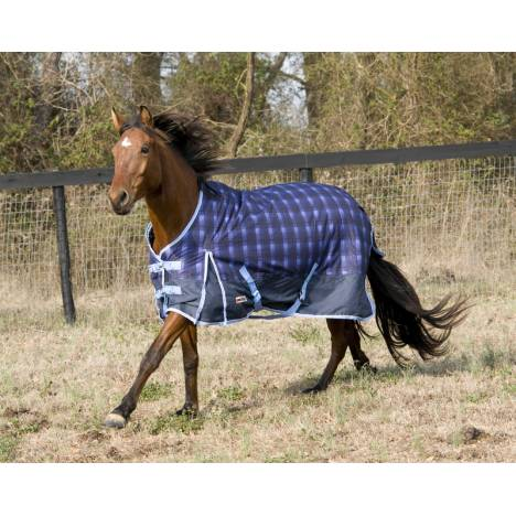 McAlister CLOSEOUT Medium Weight Turnout Blankets