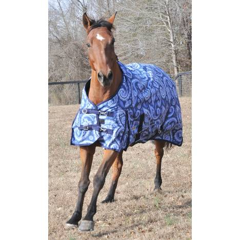 McAlister 600D Waterproof Heavyweight Print Blanket