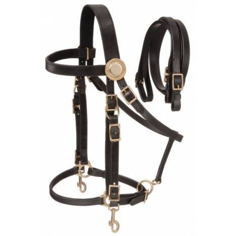 Supreme Leather Halter Bridle