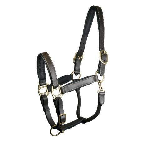 Gatsby Padded Leather Halter Fully Adjustable