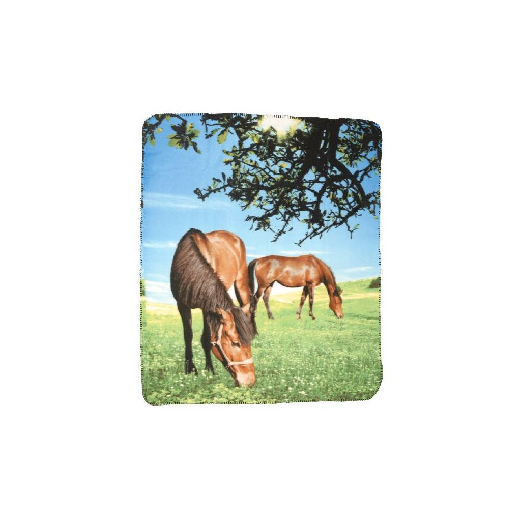 Gift Corral Blanket 2 Horses/Pasture