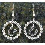 Finishing Touch Crystal Ring Horseshoe Fish Hook Earrings