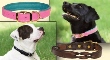 Perris Dog Collars and Leashes