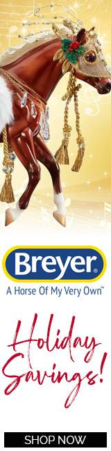 Brteyer Horses & Accessories