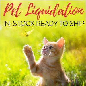 Pet Liquidation! <br>Everything In-Stock....On Sale....<br>Ready to Ship