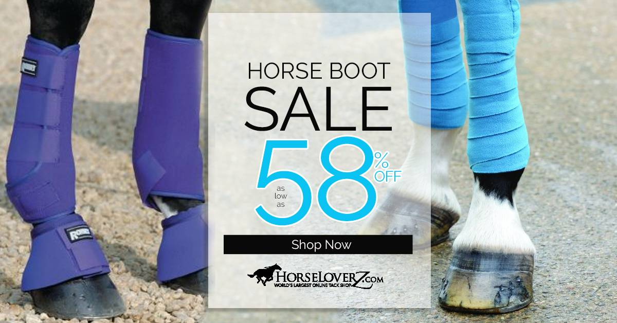 Boots & Bandages Sale Up to 58% OFF