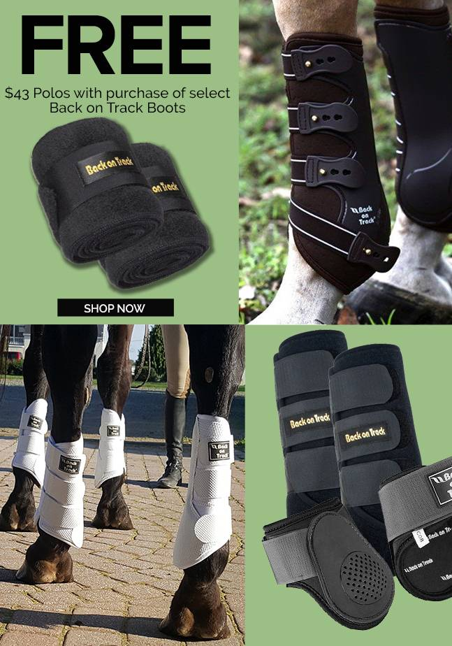 Back on Track Exclusive FREE Polo Wraps Valued at $43
