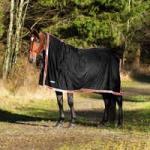 Finn Tack Blankets, Sheets & Coolers