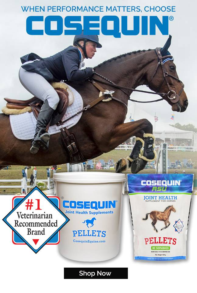 Cosequin - Veterinarian's Choice for Joint Health