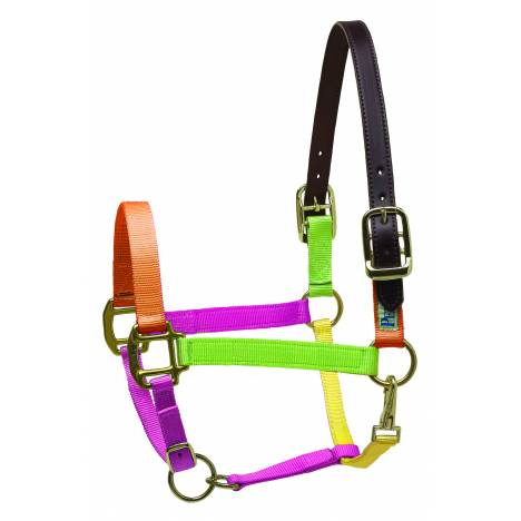 Perri's Premium Nylon Safety Halter