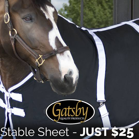 Flash Deal! ⚡<br>Gatsby Classic Stable Sheet  NOW $25