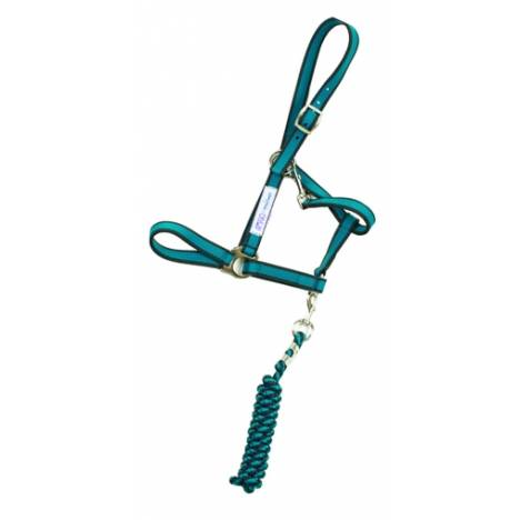 Amigo Nylon Halter & Lead Rope Set