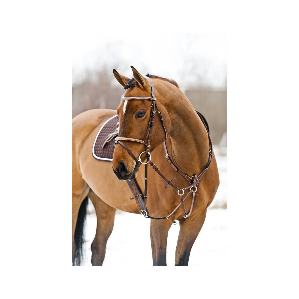 HorZe Constance Bridle With Fancy Stitchings