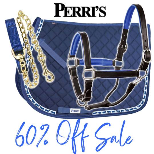 NEW! Perri's Summer Clearance<br>Up to 60% OFF Deals