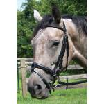 Shannon Raised Padded Snaffle Bridle