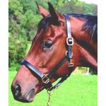 Pro-Trainer Triple Stitched Adjustable Halter