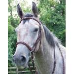 ProAm Square Raised Padded Fancy Stitched Bridle